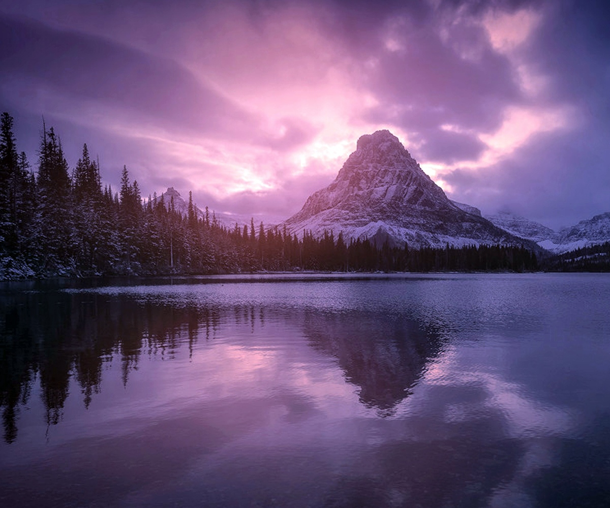 00 Ryan Dyar. Falling Winter. 2014